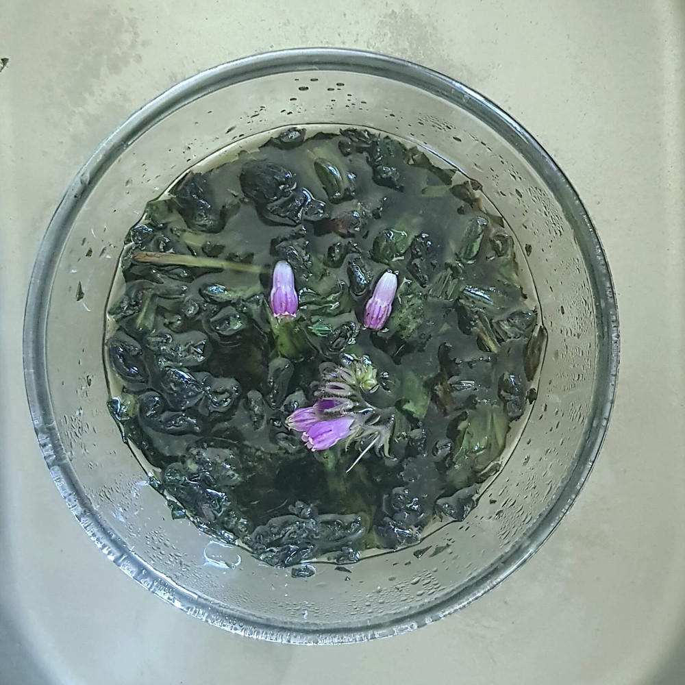 natural first aid herbs, infusion, comfrey, plantian, cuts, burns, sting, heal yourself