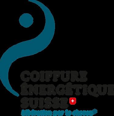 logo-ces-DEF-2020.png