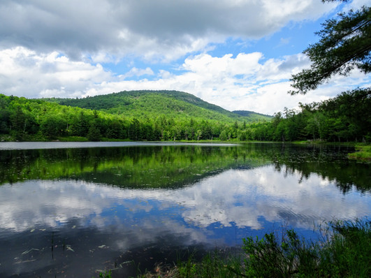 Rogers Lake.jpg
