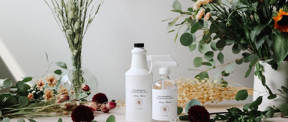 Multipurpose Cleaner Duo