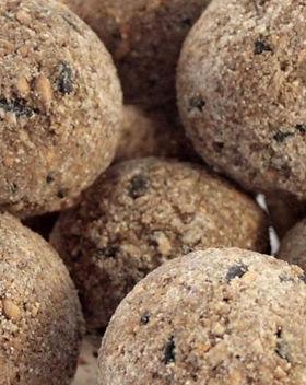 Fat balls_edited.jpg