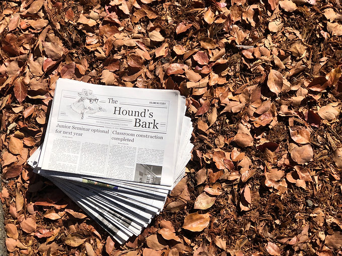 a stack of newspapers lay on the ground