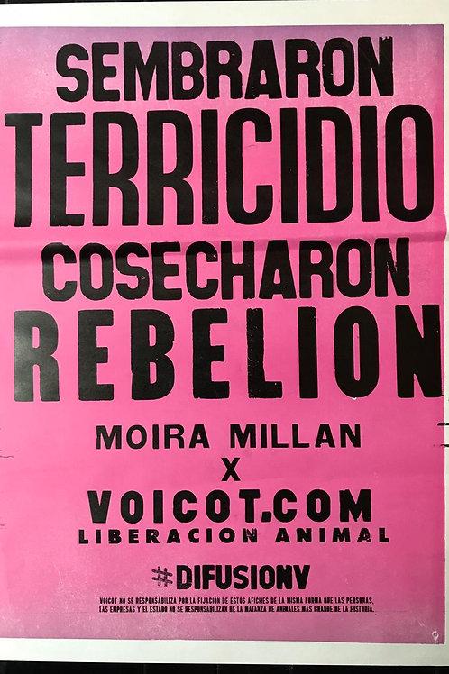 Afiche Terricidio x Moira Millan (Edición mini)