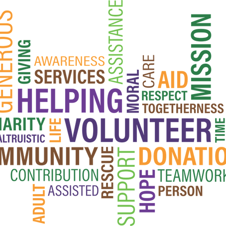World Humanitarian Day: The JCI Team's Favorite Volunteer Causes and Organizations