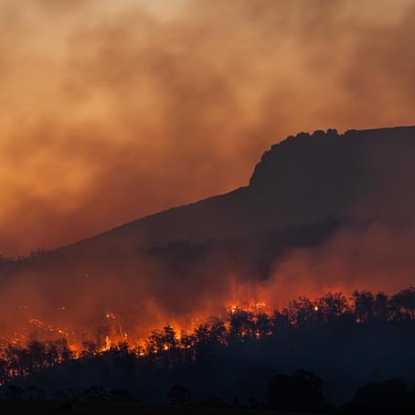 California & Climate Change