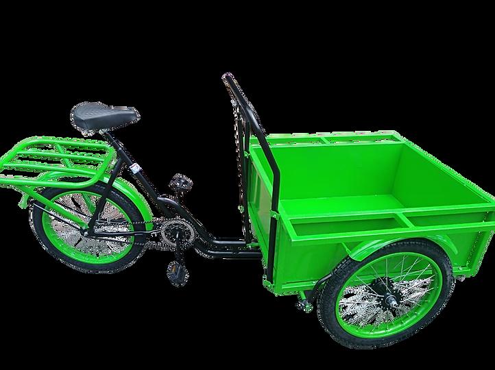 triciclo carga delantera 1.png
