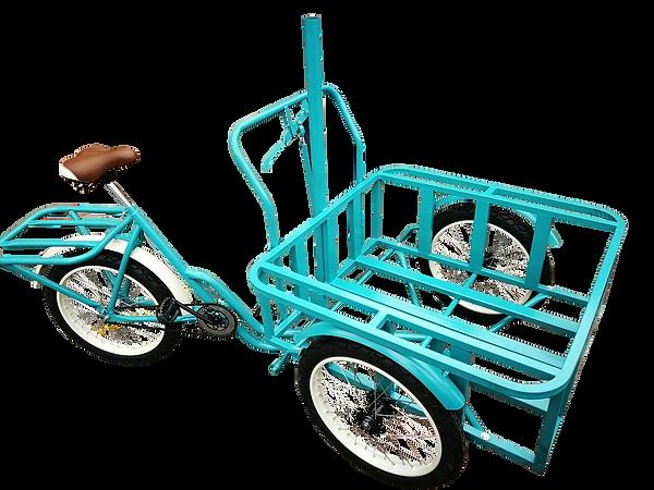 triciclo carga delantera 4.png
