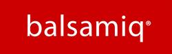 balsamiq-logo-screen