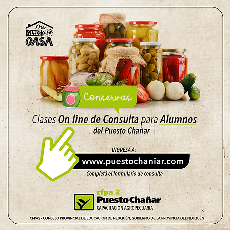 clases consulta on line-02.png