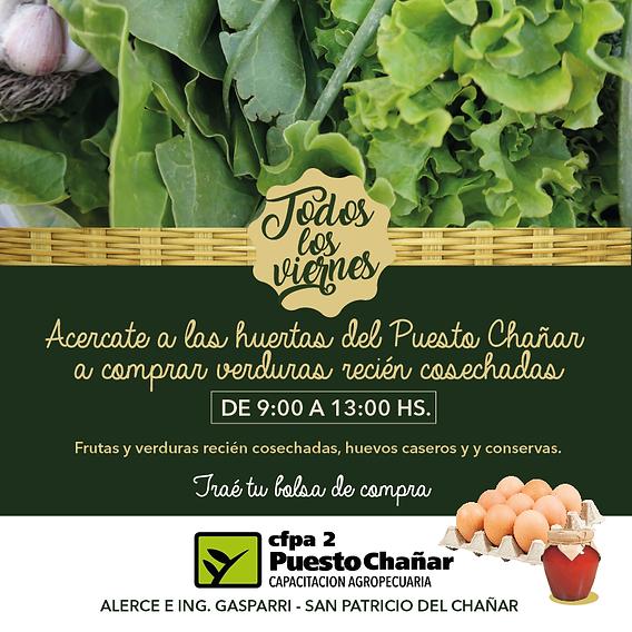 verduras de las huertas 9 a 13-02.png