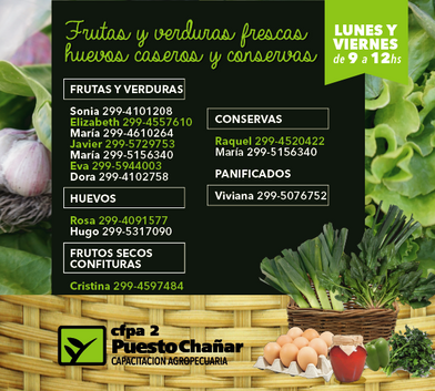 verduras de las huertas-02.png