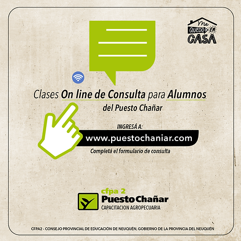 clases consulta on line-01.png
