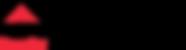 Real biz logo Youtube.png
