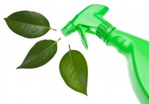 Eco-Friendly-Pic-2-300x211-1