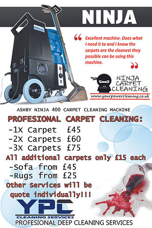 PROFESIONAL  CARPET CLEANING1.jpg