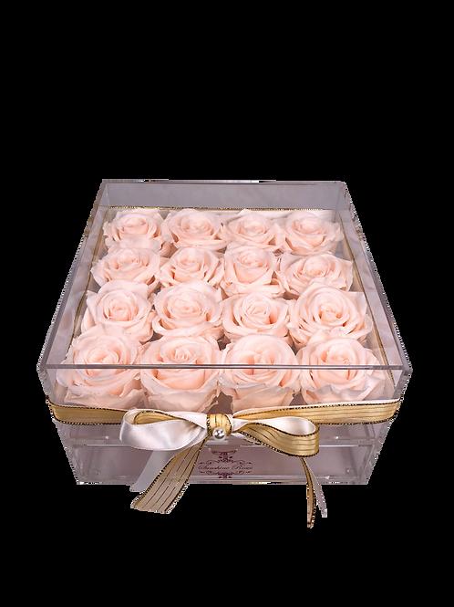Large Acrylic 16 Blush Roses