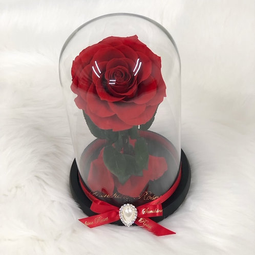 Beauty in a Glass