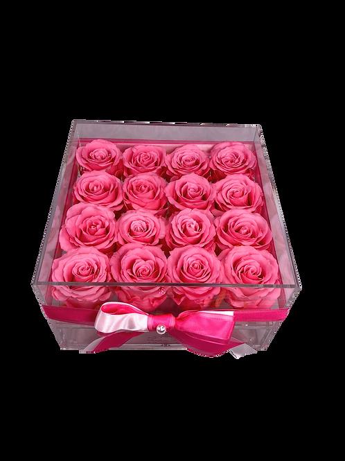 Large Acrylic 16 Pink Roses