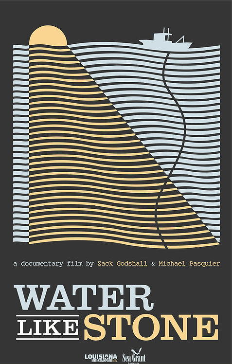 WATER LIKE STONE - DVD