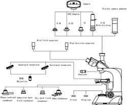 L3200 Diagram.jpg