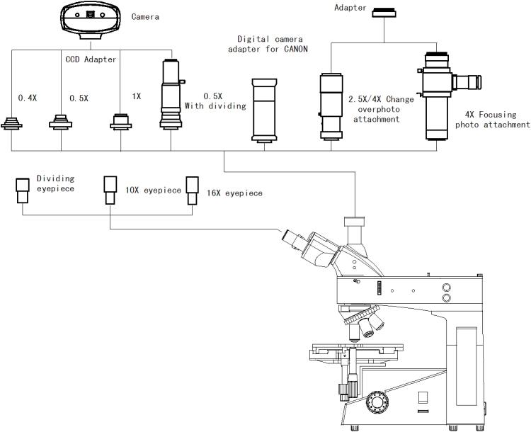 XJL-302 Diagram.jpg