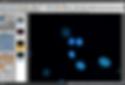 microscope fluorescence image Blue