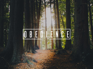 The Importance of Obedience