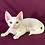 Thumbnail: 474 Elf  male kitten Devon Rex