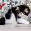 Thumbnail: 119 Grant   Persian  male kitten