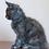 Thumbnail: 872 Jessy  Maine Coon female kitten