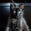 Thumbnail: 686 Balthazar  Maine Coon male kitten