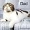 Thumbnail: 933 Vanessa  Scottish straight longhair female kitten
