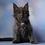 Thumbnail: 744 Simpson Maine Coon male kitten