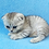 Thumbnail: 1141 Jamaika  Scottish fold shorthair female kitten
