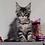 Thumbnail: 549 Dominanta    Maine Coon female kitten