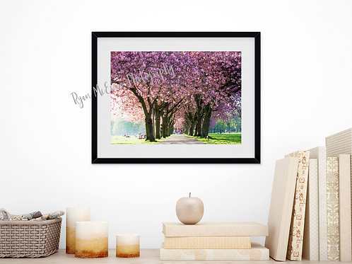 Edinburgh meadows blossom print
