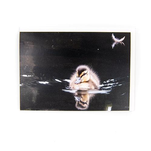 duckling Card by Ryan McEwan Photography