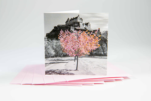 Edinburgh Castle Blossom Notelets