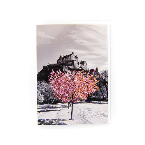 Edinburgh Castle Blossom Card by Ryan McEwan Photography
