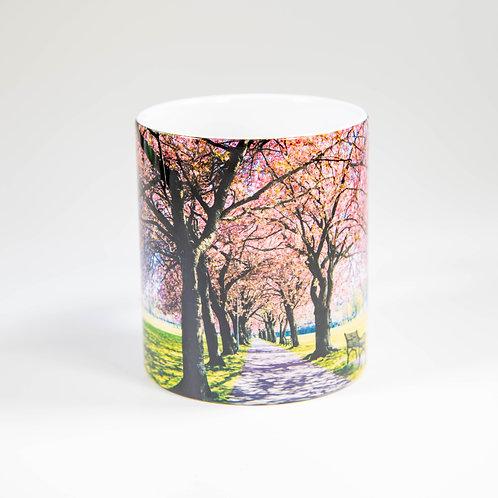The Meadows Blossom Edinburgh by Ryan McEwan Photography Mug