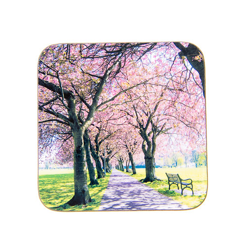 Edinburgh Meadows Blossom Coaster by Ryan McEwan Photography