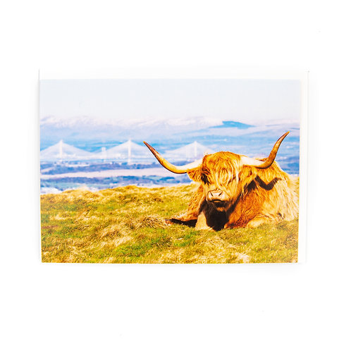 Highland Cow Edinburgh Card by Ryan McEwan Photography
