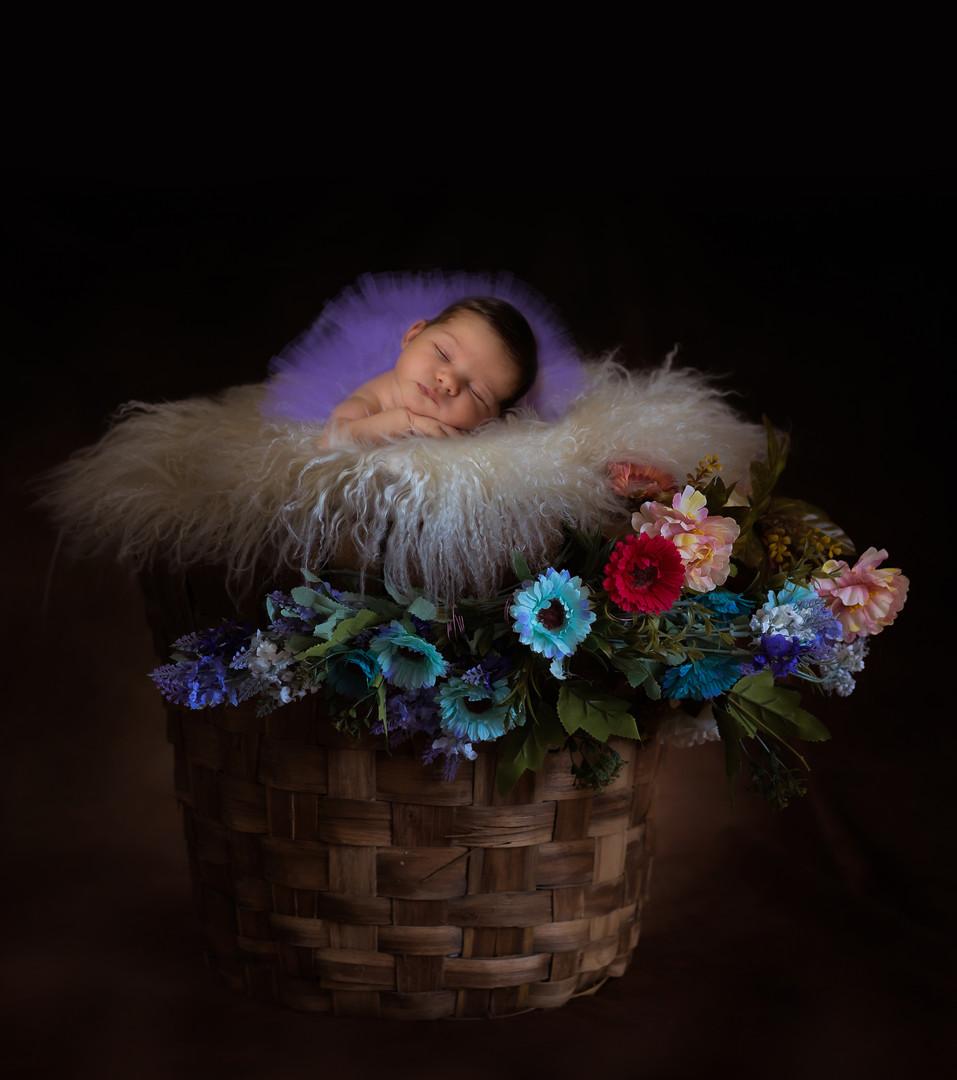 Foto neonati campobasso