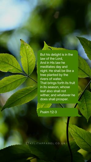 Psalms 1:2-3