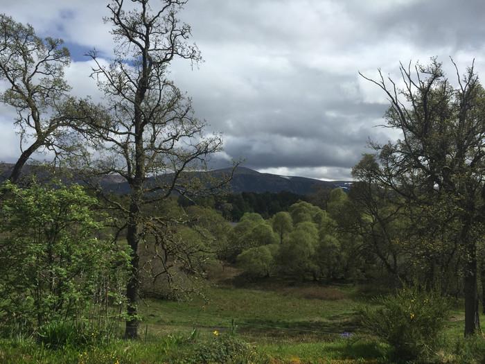 The Highland Exploration