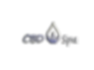 CBD Spa logo clear.png