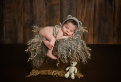 baby cub