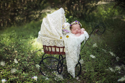 outdoor newborn baby session