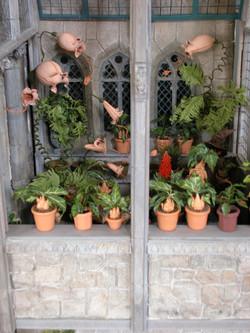 Planter full of Triffids!