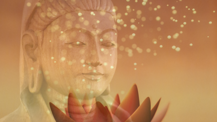 Sacred Lotus – Lady Quan Yin Energy Attunement